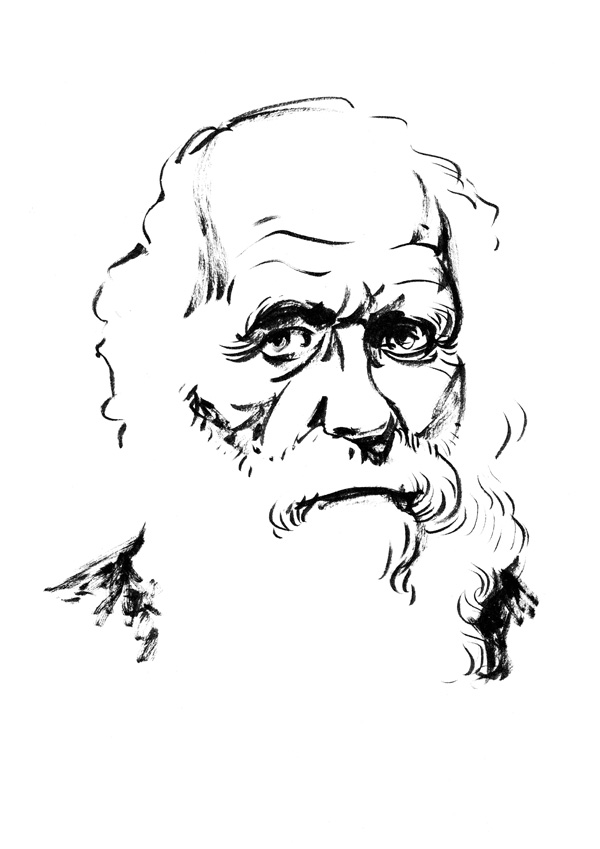 Ink portrait of Charles Darwin by Simon Gurr